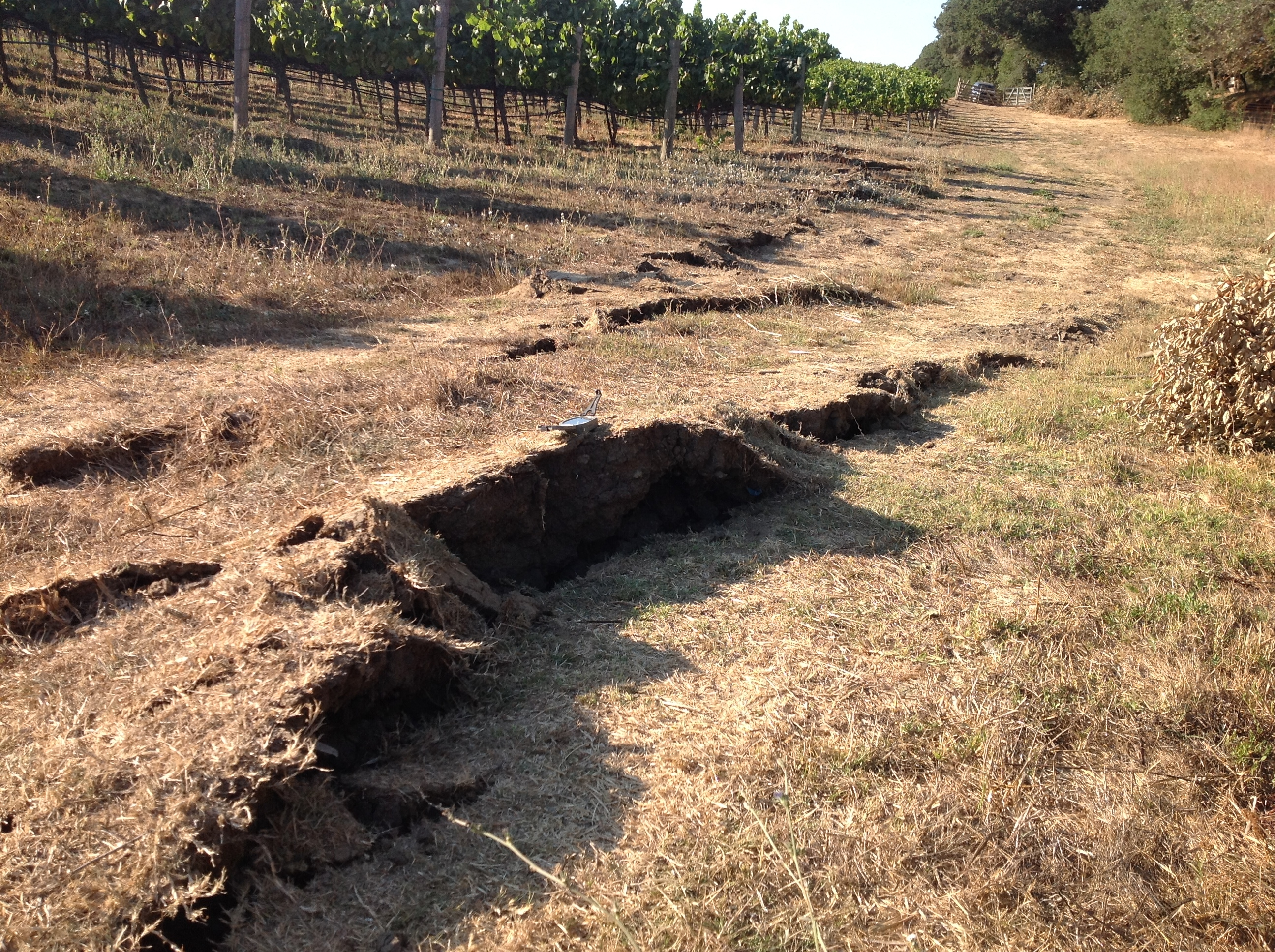 Damage on road caused by 2014 Napa quake